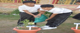 Environment Day 2019-20